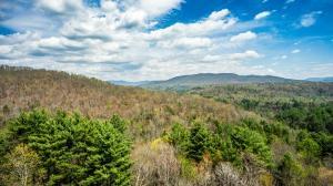 Lot #1 Green Ridge Trails, Harriman, TN 37748 (#20172880) :: Billy Houston Group