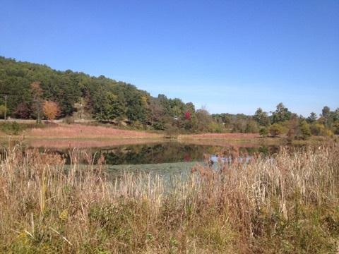 Lot 5 Frontage Road, Cleveland, TN 37312 (#20173630) :: Billy Houston Group
