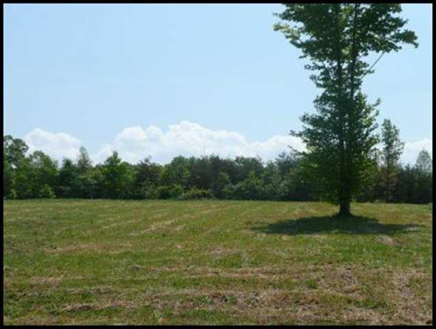 LOT 32 County Road 545, Englewood, TN 37329 (#20175744) :: Billy Houston Group