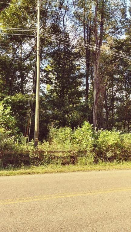 River Road W, Louden, TN 37774 (MLS #20176555) :: The Mark Hite Team