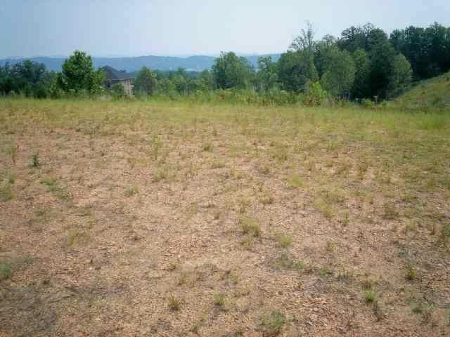 LOT 25 Walker Brow Ridge Rd, Cleveland, TN 37312 (#20182567) :: Billy Houston Group