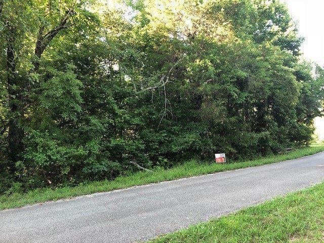 Cedar Point Drive, Kingston, TN 37763 (#20184644) :: Billy Houston Group