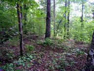 0000 Rafter Road, Tellico Plains, TN 37385 (#20185099) :: Billy Houston Group