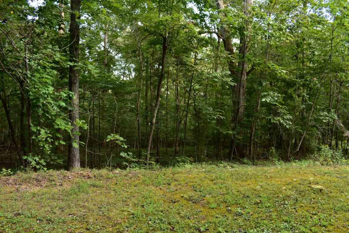 Lot 176 & 17 Scenic Lakeview Drive - Photo 1