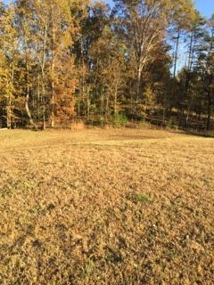 lot 27 Bell Crest Drive, Cleveland, TN 37312 (MLS #20186844) :: Austin Sizemore Team
