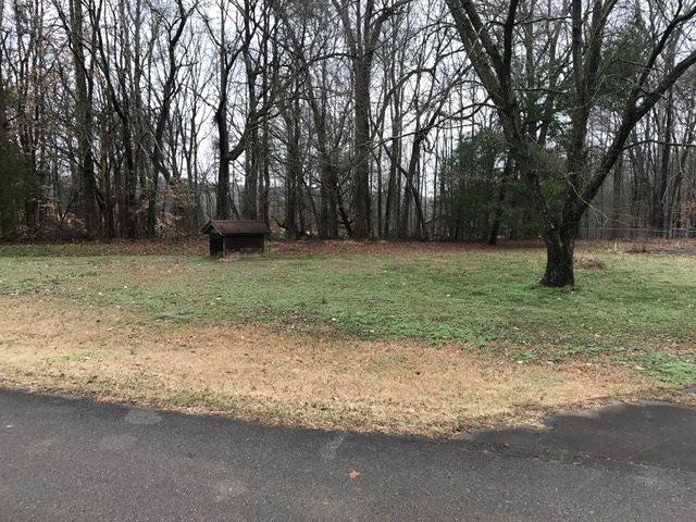 109 County Road 137, Riceville, TN 37370 (#20190358) :: Billy Houston Group