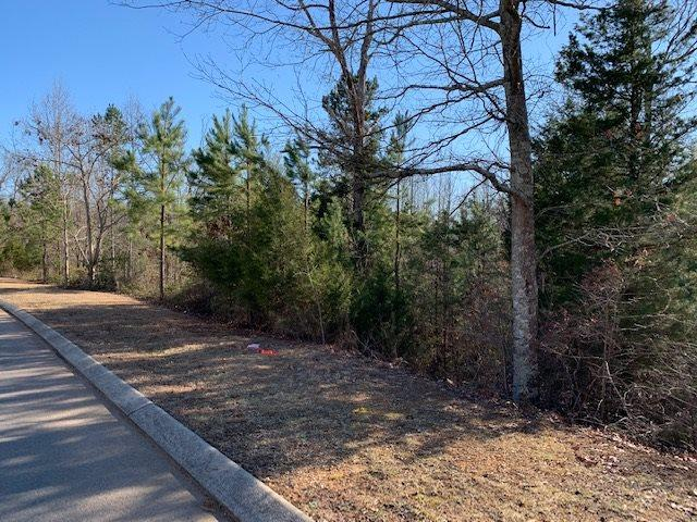 Lot 44 William Way Se, Cleveland, TN 37323 (#20190841) :: Billy Houston Group