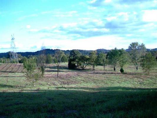 lot 10 State Highway 58, Ten Mile, TN 37880 (MLS #20190955) :: The Jooma Team