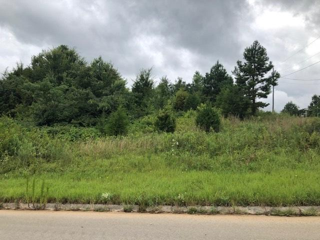 Lot 56 County Road 266, Sweetwater, TN 37874 (MLS #20194160) :: The Mark Hite Team