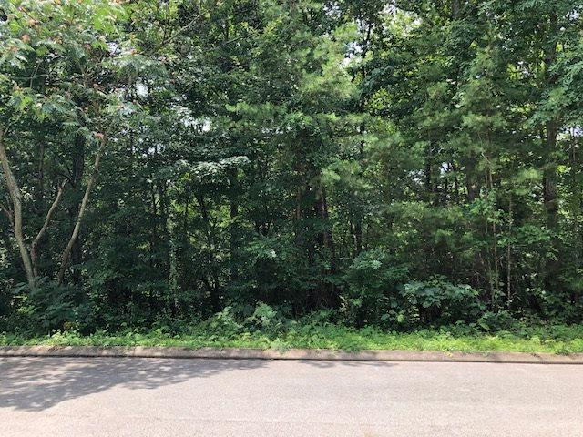 Lot 19 Callen Cove, Athens, TN 37303 (MLS #20194213) :: The Mark Hite Team