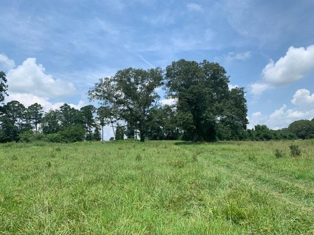 520 Armstrong Rd SE, Cleveland, TN 37323 (MLS #20194219) :: The Mark Hite Team