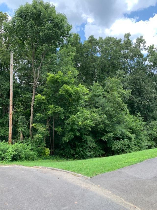 Lot 48 Timber Court Se, Cleveland, TN 37323 (#20194359) :: Billy Houston Group