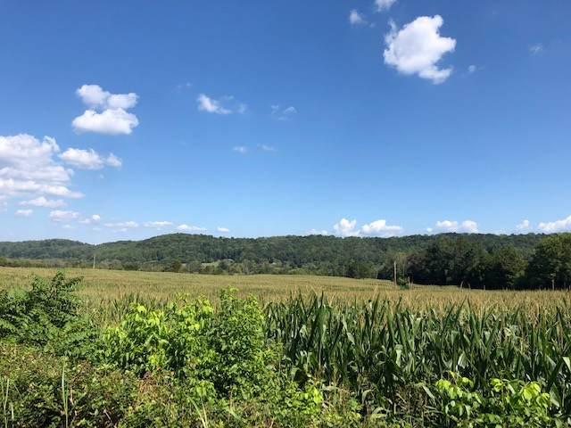 400-500 blk County Road 62, Riceville, TN 37370 (MLS #20195519) :: The Mark Hite Team