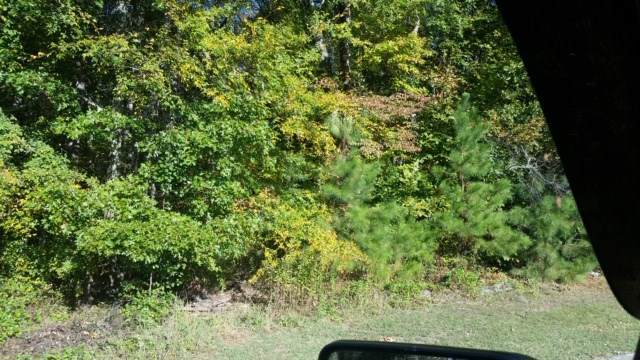 Lot 4 Will Lewis Drive, Cleveland, TN 37323 (MLS #20196299) :: The Mark Hite Team