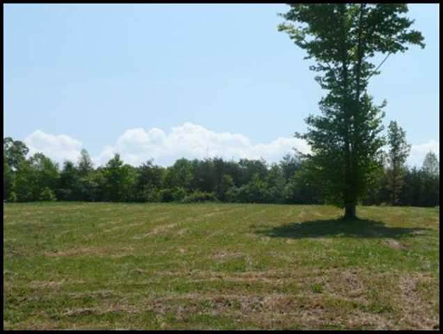 LOT 32 County Road 545, Englewood, TN 37329 (MLS #20196743) :: Austin Sizemore Team
