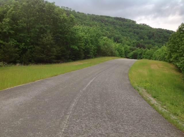 32 Escape Drive, Evensville, TN 37332 (MLS #20200071) :: The Mark Hite Team