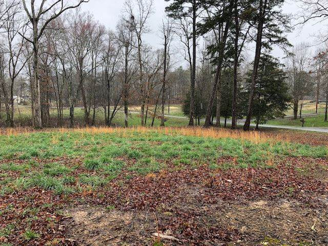 0 Russell Lane Lot 15, Decatur, TN 37322 (MLS #20201015) :: The Mark Hite Team