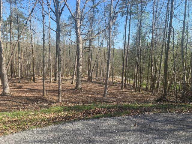lot 201 Echota Drive, Rockwood, TN 37854 (MLS #20204276) :: The Edrington Team