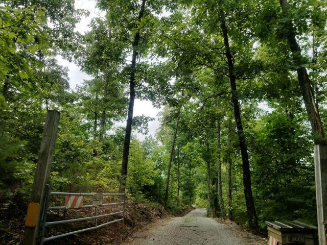 3.9Ac Holder Cemetery Road, Tellico Plains, TN 37385 (MLS #20205078) :: The Edrington Team