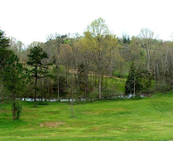 Lot 6 Wautauga Lane - Photo 1
