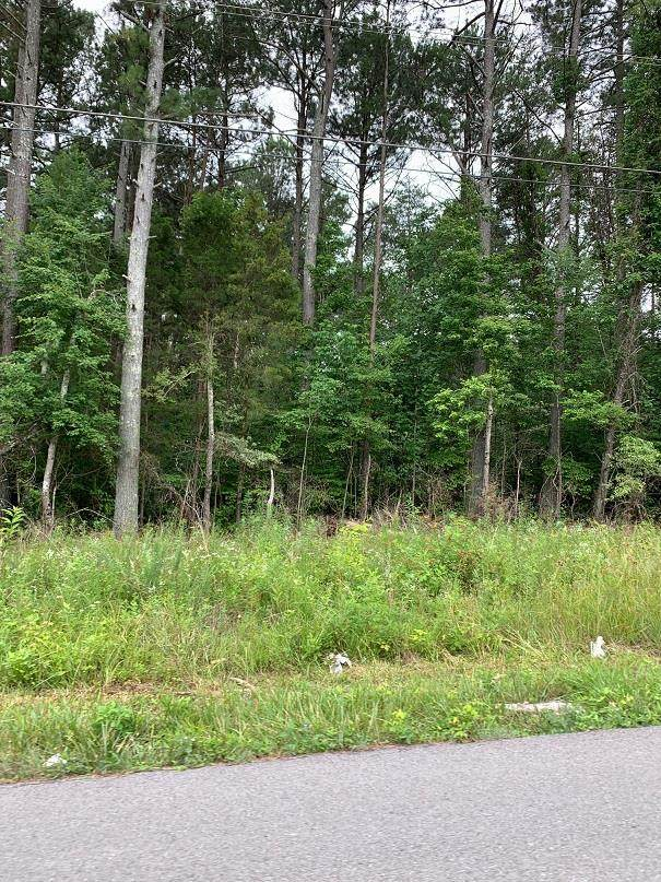 lots 5 & 6A Huff Bend Lane, Ten Mile, TN 37880 (MLS #20205879) :: The Edrington Team
