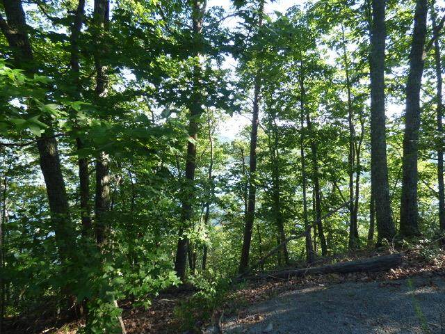 lot 515-518 Rockview Drive, Spring City, TN 37381 (MLS #20206280) :: The Edrington Team