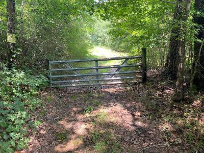 1189 County Road 20 (Tract 4) - Photo 1
