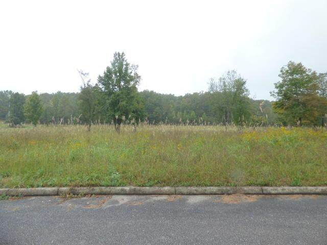 Lot 2, 5, 17 Royal Crest And Stump Hollow, Spring City, TN 37381 (MLS #20207452) :: The Edrington Team