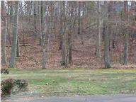 Lot 88 NE Charterwood Lane, Cleveland, TN 37312 (#20209041) :: Billy Houston Group