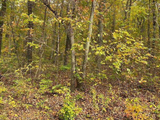 Lot 21 Sussex Rd, Dayton, TN 37321 (MLS #20209356) :: The Mark Hite Team
