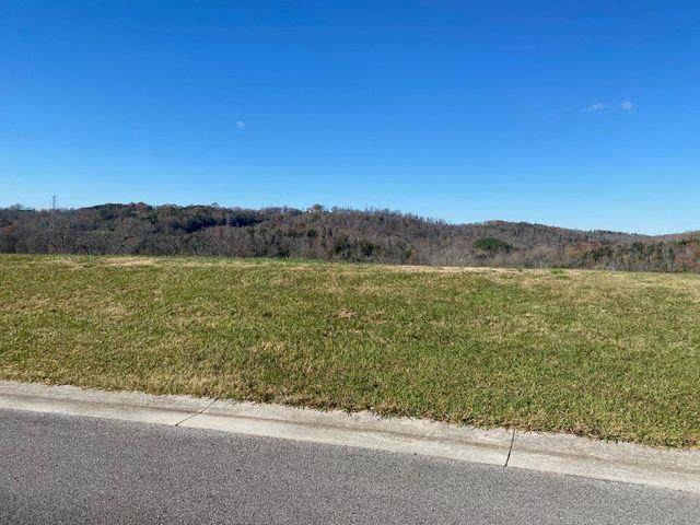 2399 Persimmon Ridge, Loudon, TN 37774 (MLS #20209667) :: Austin Sizemore Team