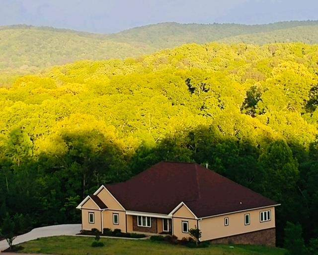 175 NW Scenic View Dr, Georgetown, TN 37336 (MLS #20210052) :: The Jooma Team