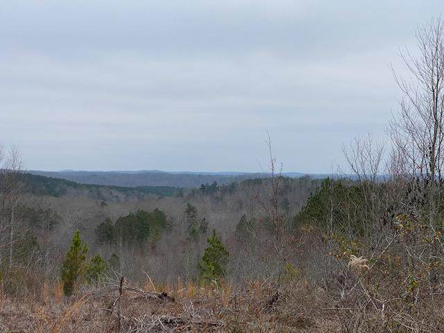 79.49 Acres S No Pone, Decatur, TN 37322 (MLS #20210281) :: The Jooma Team