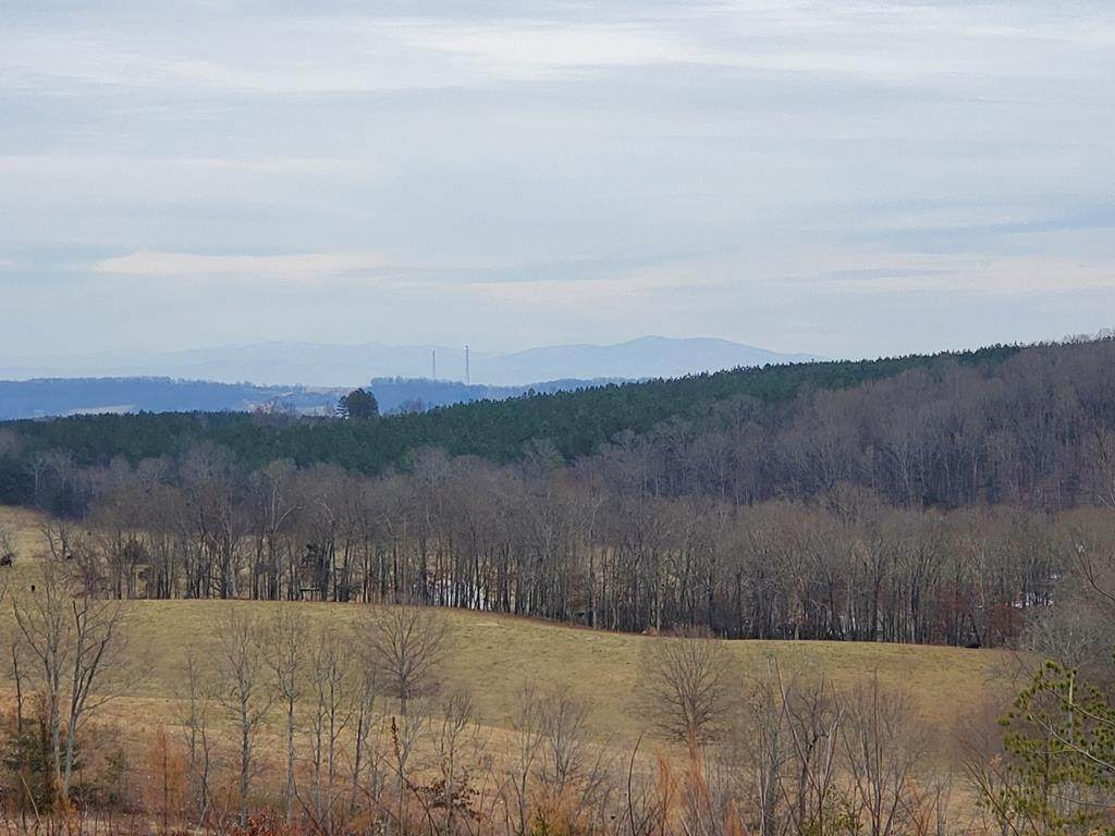 45 Acres off Slabtown Road - Photo 1