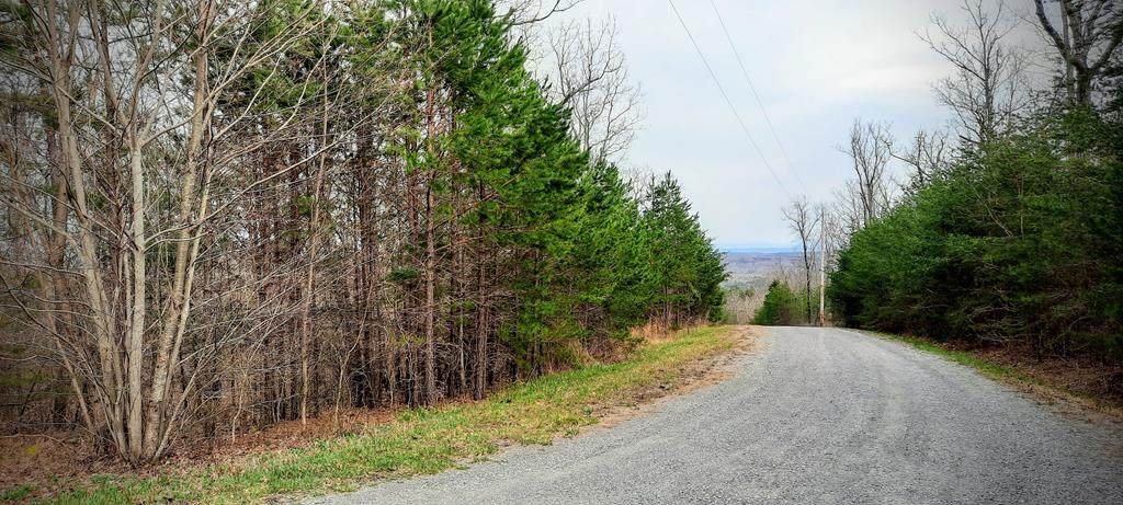 5.30 Acres Forest Knoll Road - Photo 1