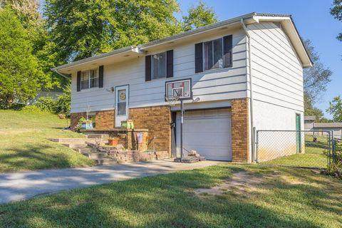 9023 Waconda Shore Drive, Chattanooga, TN 40741 (MLS #20212194) :: The Edrington Team