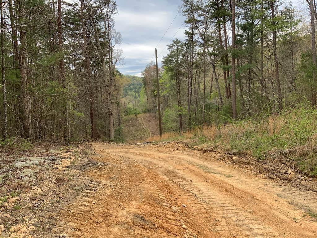 00 Steer Creek Road - Photo 1