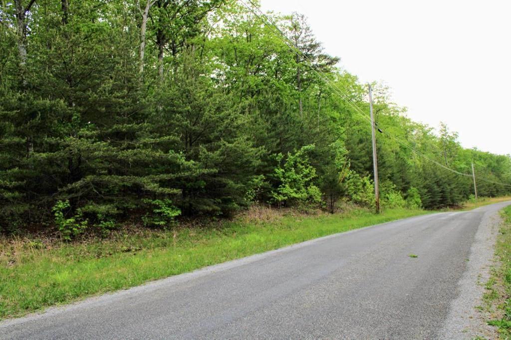 Lot 23 Gray Creek Road - Photo 1