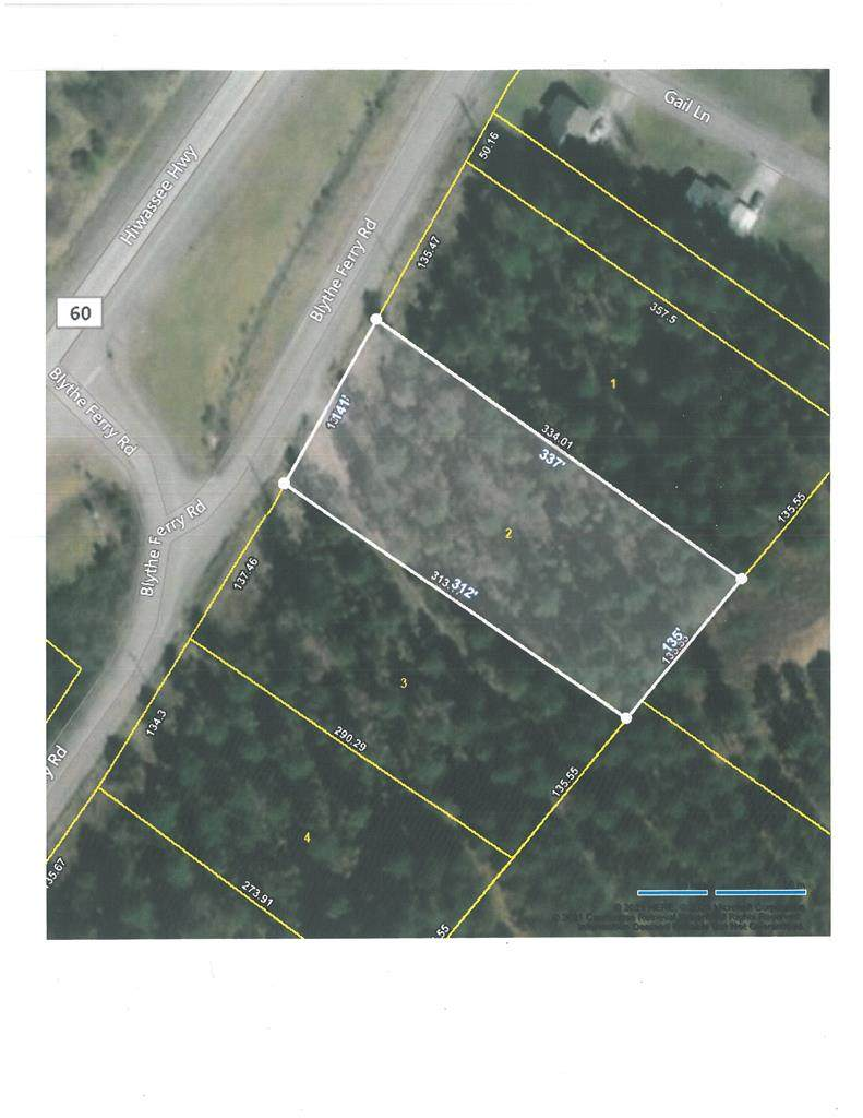 Lot 2 Blythes Ferry Road - Photo 1