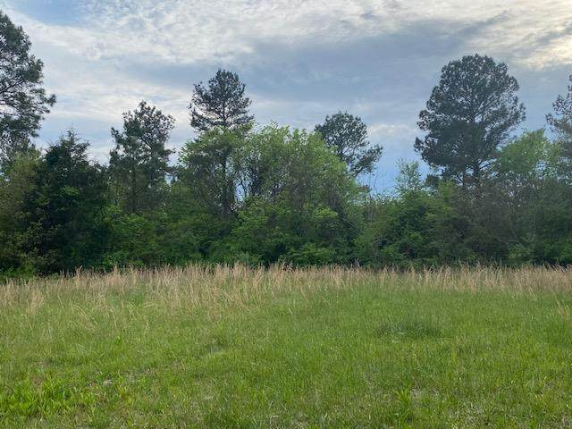 Tracts 1&2 Co Rd 351 - Photo 1