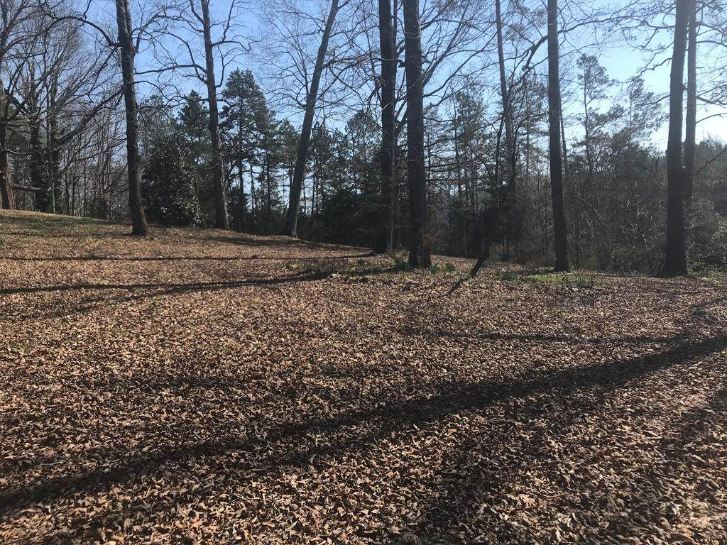 29 acres Lower River Road Nw - Photo 1