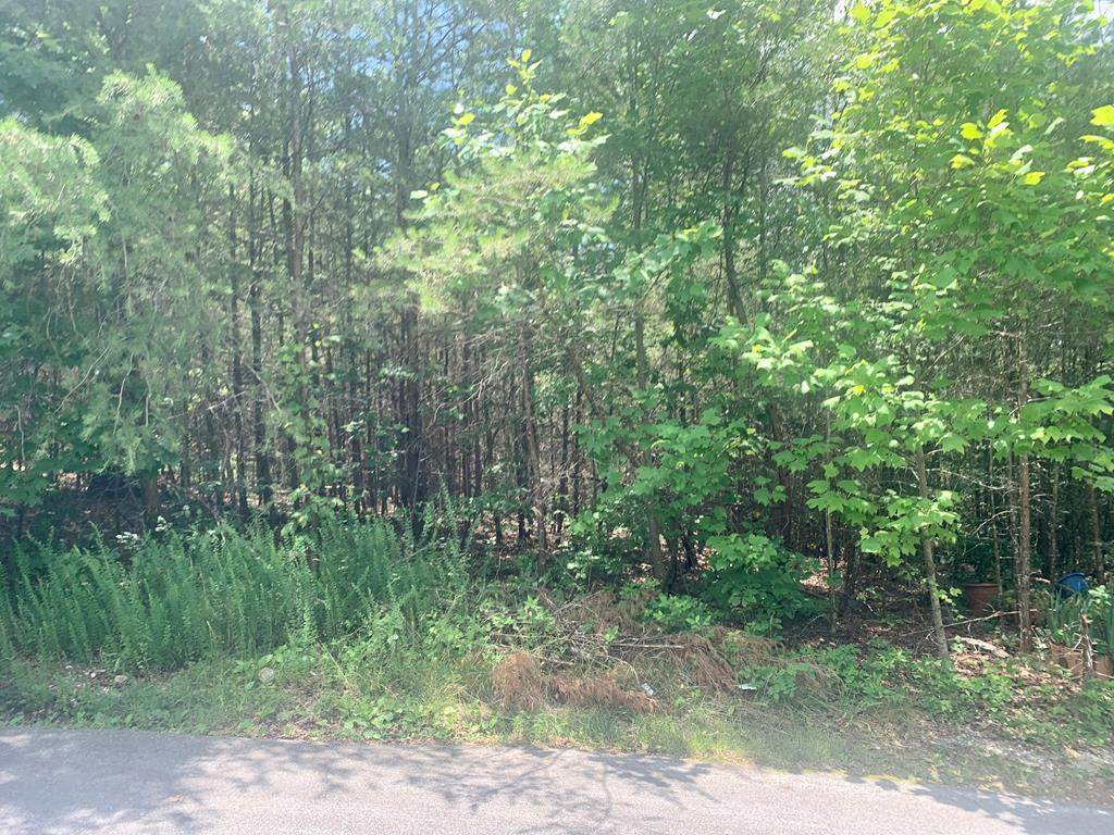 415 Windy Ridge Drive - Photo 1