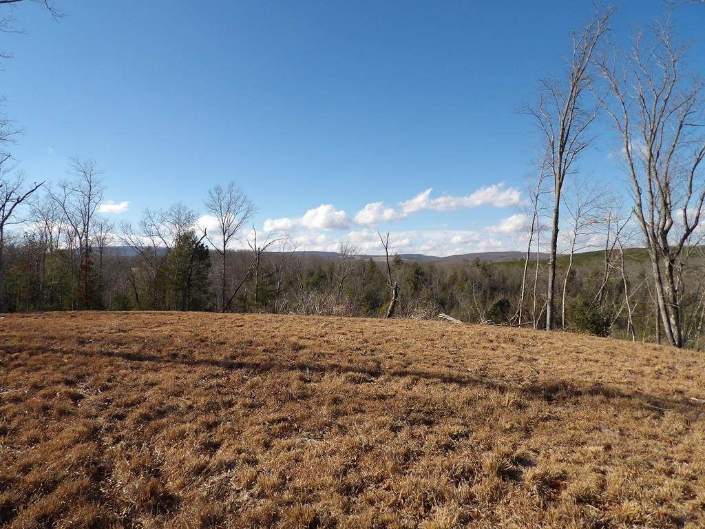 Lot 1 Old Grandview Highway - Photo 1