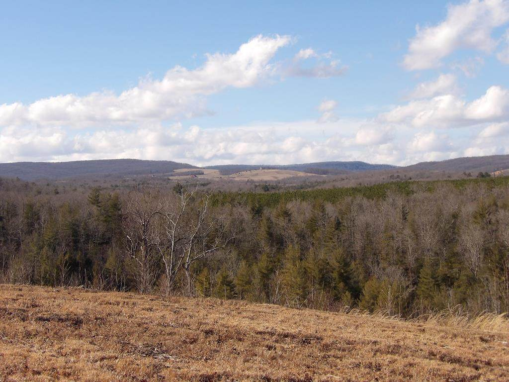 Lot 2 Off Old Grandview Highway - Photo 1