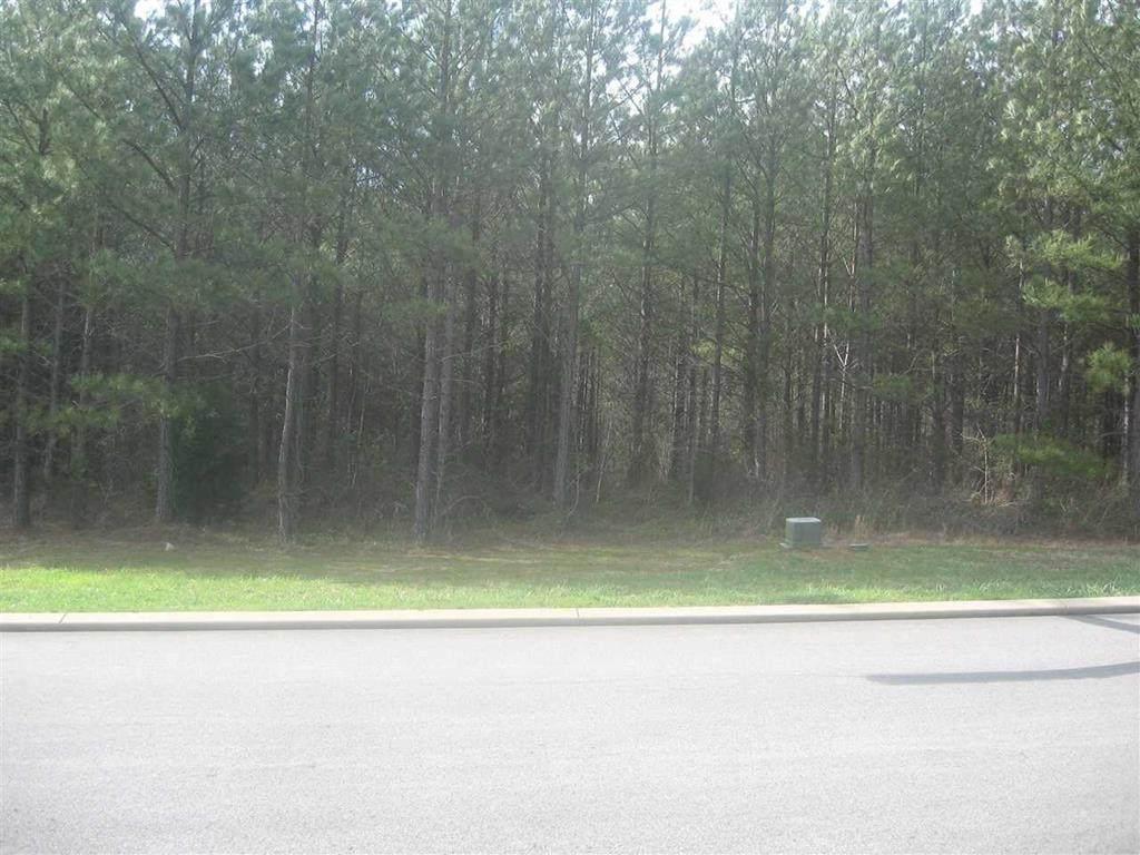 204 Mountain View Circle - Photo 1