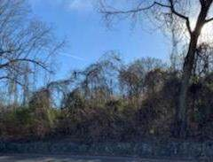 .68 Acres 3rd Street Sw, Cleveland, TN 37311 (#20213906) :: Billy Houston Group