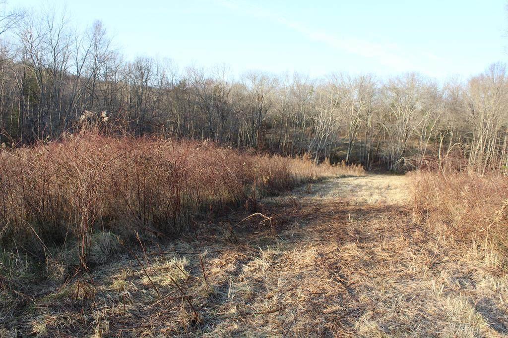 1094 Rhea County Highway - Photo 1