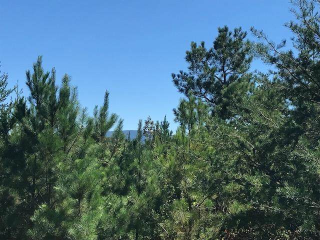 Tract 4 Athens Road - Photo 1
