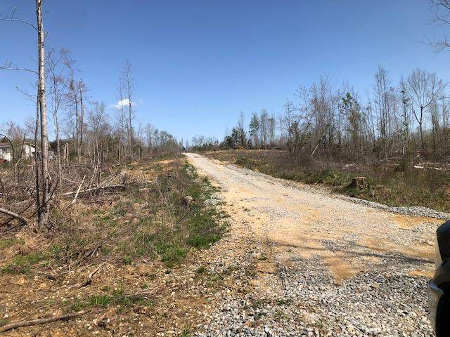 Tract 1 County Road 290 - Photo 1