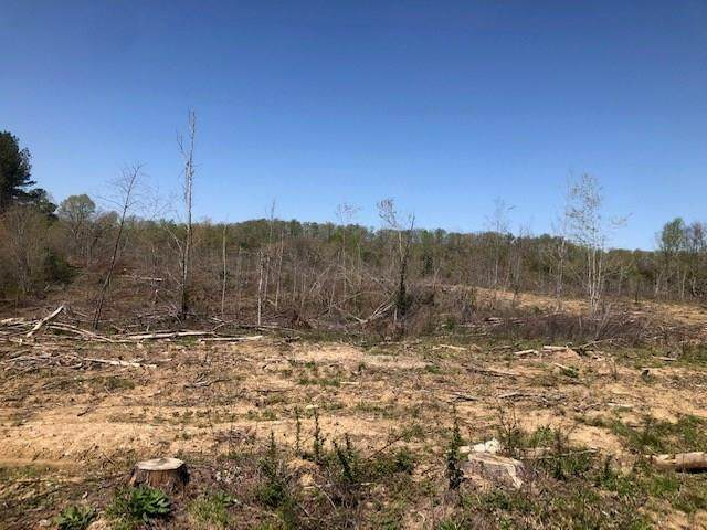 Tract 4 County Road 290 - Photo 1
